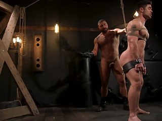 Muscular gay males just about resemble scenes of starring role fetish