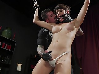 Submissive shemale roughly dominated and fucked