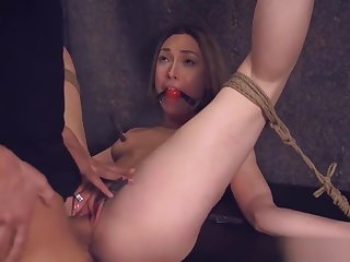 Puristic Bdsm Babe Gets Anally Banged By Dom